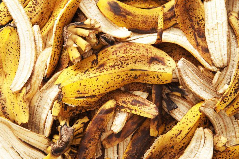 Секреты богатого урожая: подкормка помидоров банановой кожурой